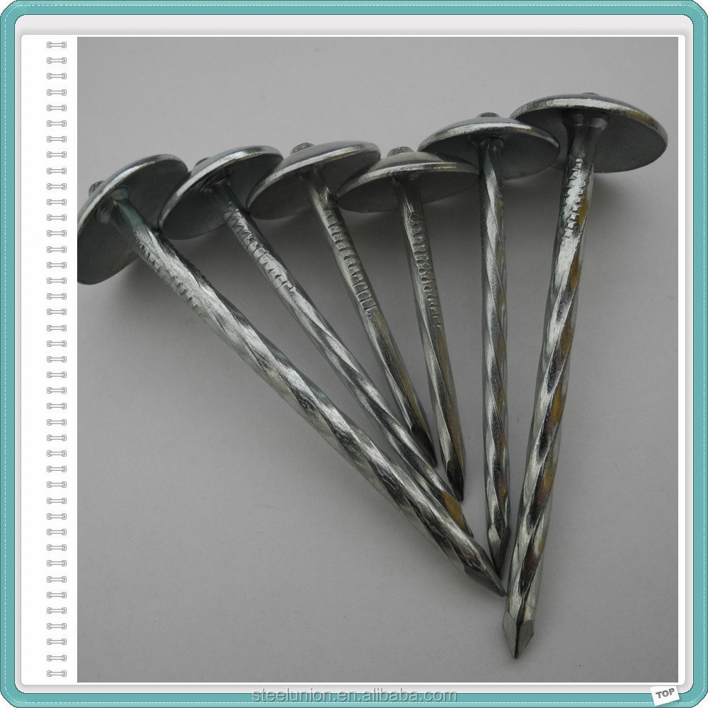 Iron Material roofing umbrella nail