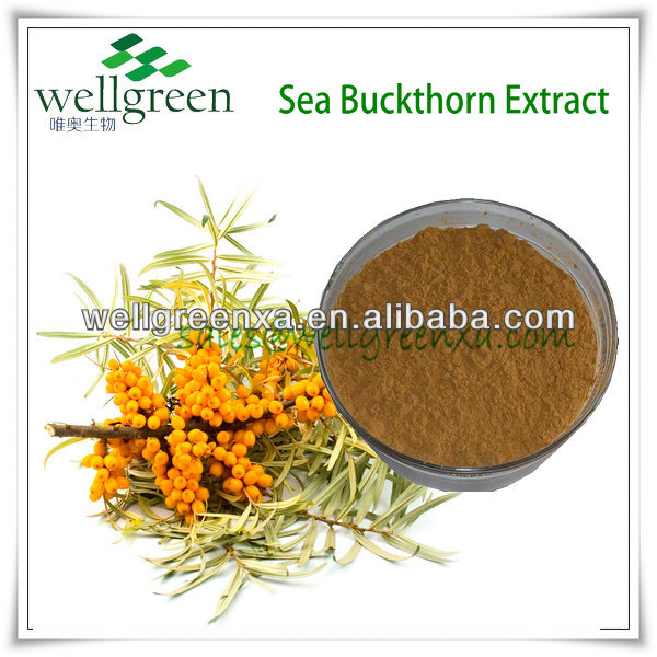 100% Natural Seabuckthorn Fruit Extract powder 25% Flavone
