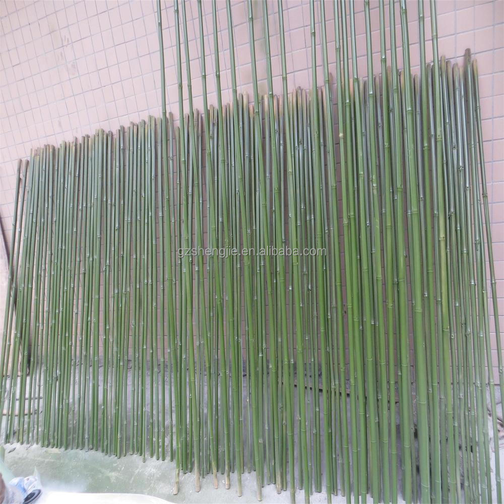Hand Made Plastic Bamboo Plants Wholesale Artificial Fake
