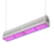ETL Certified 5 years warranty Quick grow Deep penetration led Red and Blue greenhouse light