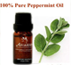 100% Natural black pepper mint Oil, Peppermint Pure Essential Oil, OEM ODM Provided