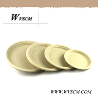 Eco friendly party use disposable tableware