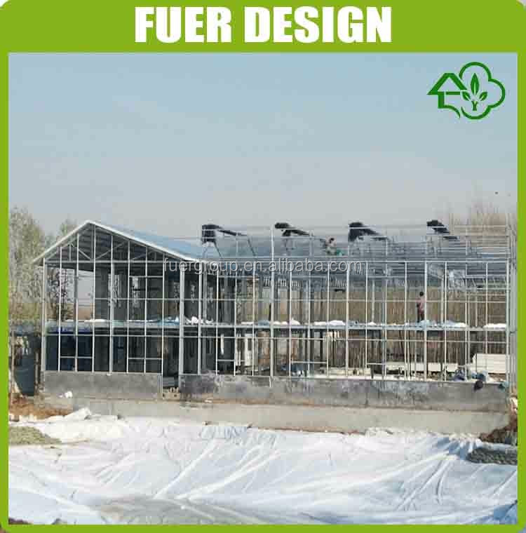 Low cost transparent green house