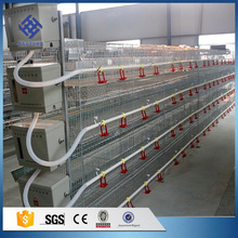 Supply hot sale used chicken farm poultry equipment / cage chicken egg