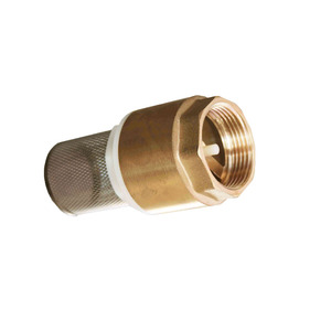 nonreturn low cost 1 inch brass foot valve