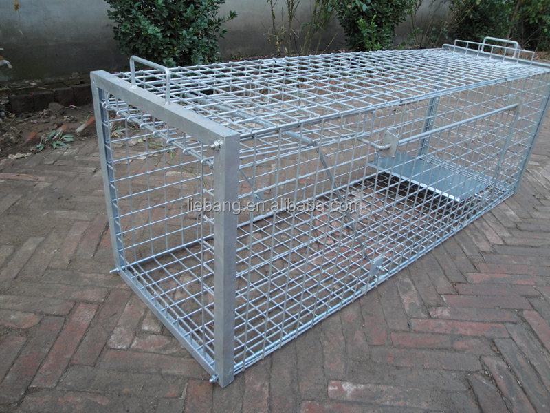 Dog Traps For Sale Uk