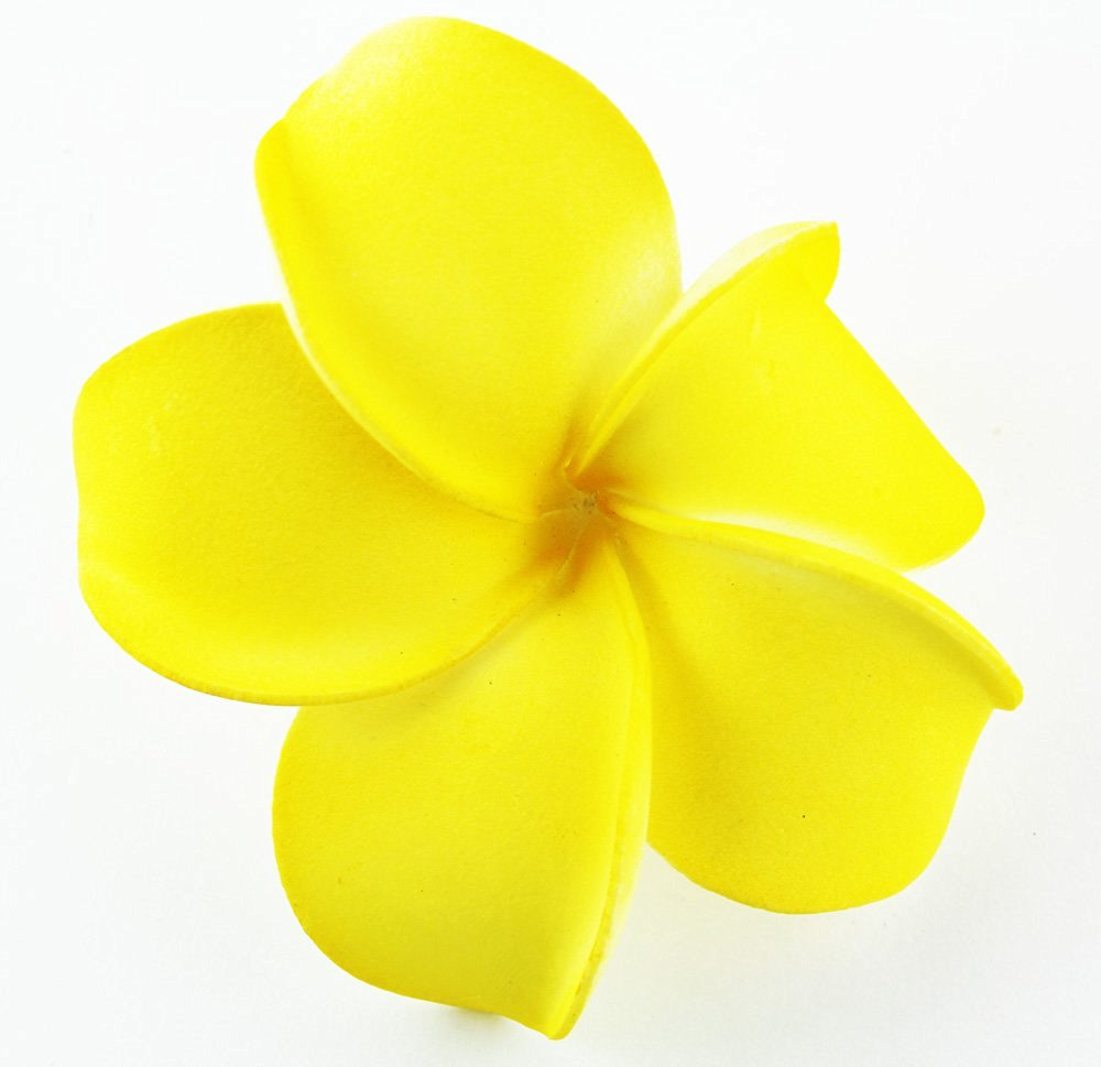 Buy hawaiian flower hair clip tropical flower summer hair hawaiian flower hair clip tropical flower summer hair accessory yellow izmirmasajfo