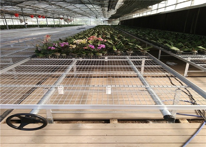 Welded mesh top used in greenhouse rolling bench for sell