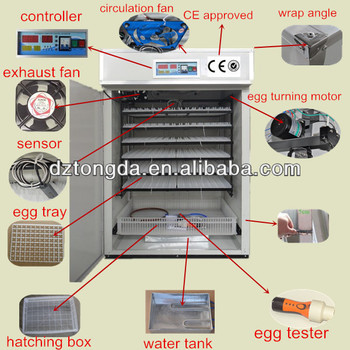 Chicken Egg Cabinet Incubators Preserving Quail Eggs Solar ...