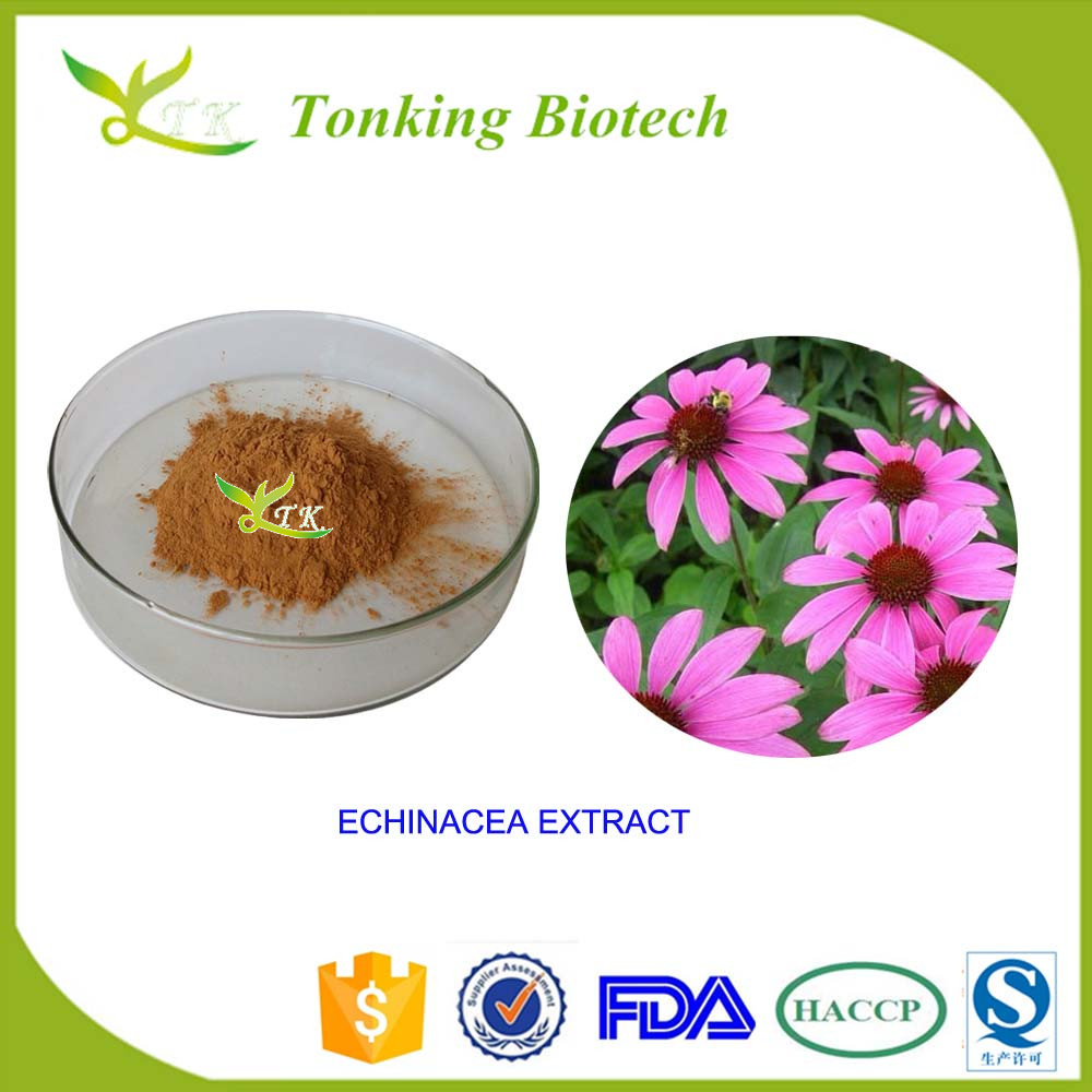 Anti Cold Chinese Herbal Medicine Echinacea Purpurea - Buy Echinacea  Purpurea Product on Alibaba com