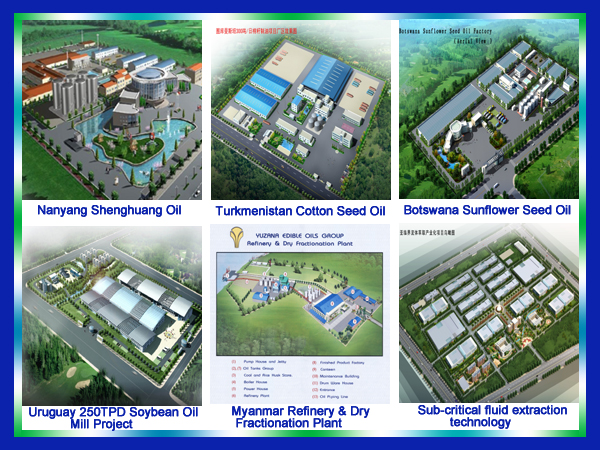 aerial view of Kingdo Successfull edible oil mill projects.jpg