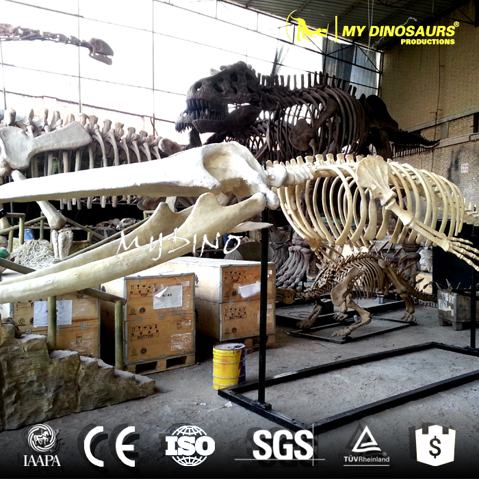 MY DINO-DSS053 Artificial Animal Skull for Sale
