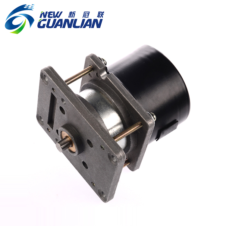 Single phase 22w 110-120v high torque low speed synchronous motor