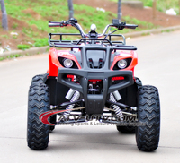 Electric Quad /ATV In Wheel Motor With Differential Mechanism