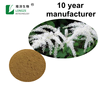 Black Cohosh Extract Powder with Triterpene Glycosides