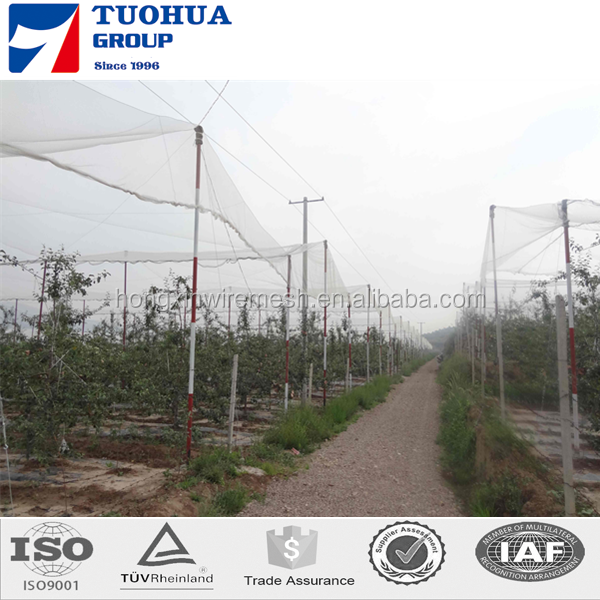 Agricultural Protection Anti Hail Netting with A Series Of Specifications