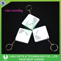Wholesale Cheap Promotional Mini Voice Recorder Keychain,Keychain Voice Recorder,Custom Sound Keychain With Logo