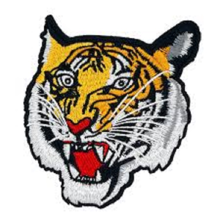 SAFARI TIGER FACE Iron On Embroidered Patch WILD ANIMAL ZOO /& JUNGLE