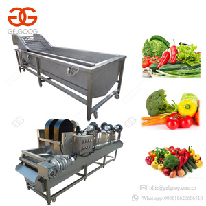 New Style Advanced Designed Herb Dryer Machine Bubble Type Fruit Vegetable Washing And Drying Machinery