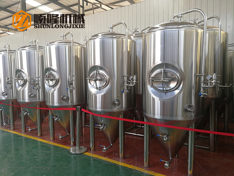600l mirror SUS 304 glycol jacket cooling mini beer fermenter for home brewer pubs restaurant and hotels