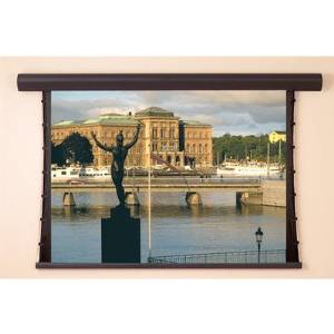 """Silhouette Series V White Electric Projection Screen Viewing Area: 50"""" H x 50"""" W"""