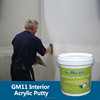 Premium Quality Water Resistant Wall Patching and Plastering GM11 Interior Acrylic Putty