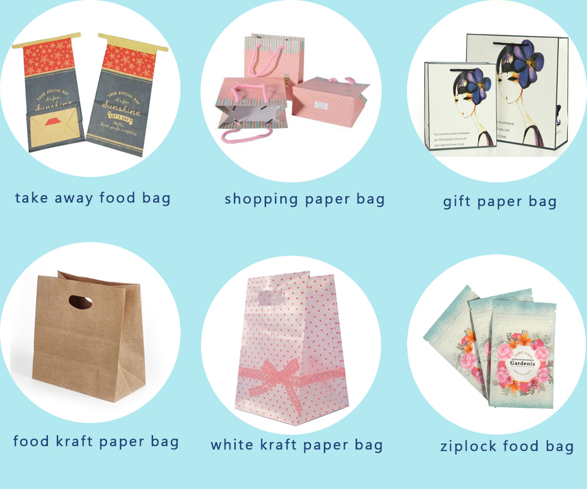 Custom Recyclable Small Gift Printing Paper Bag