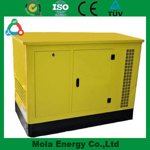 5KVA Silent Biogas /Diesel / Nature Gas Generator For Sale