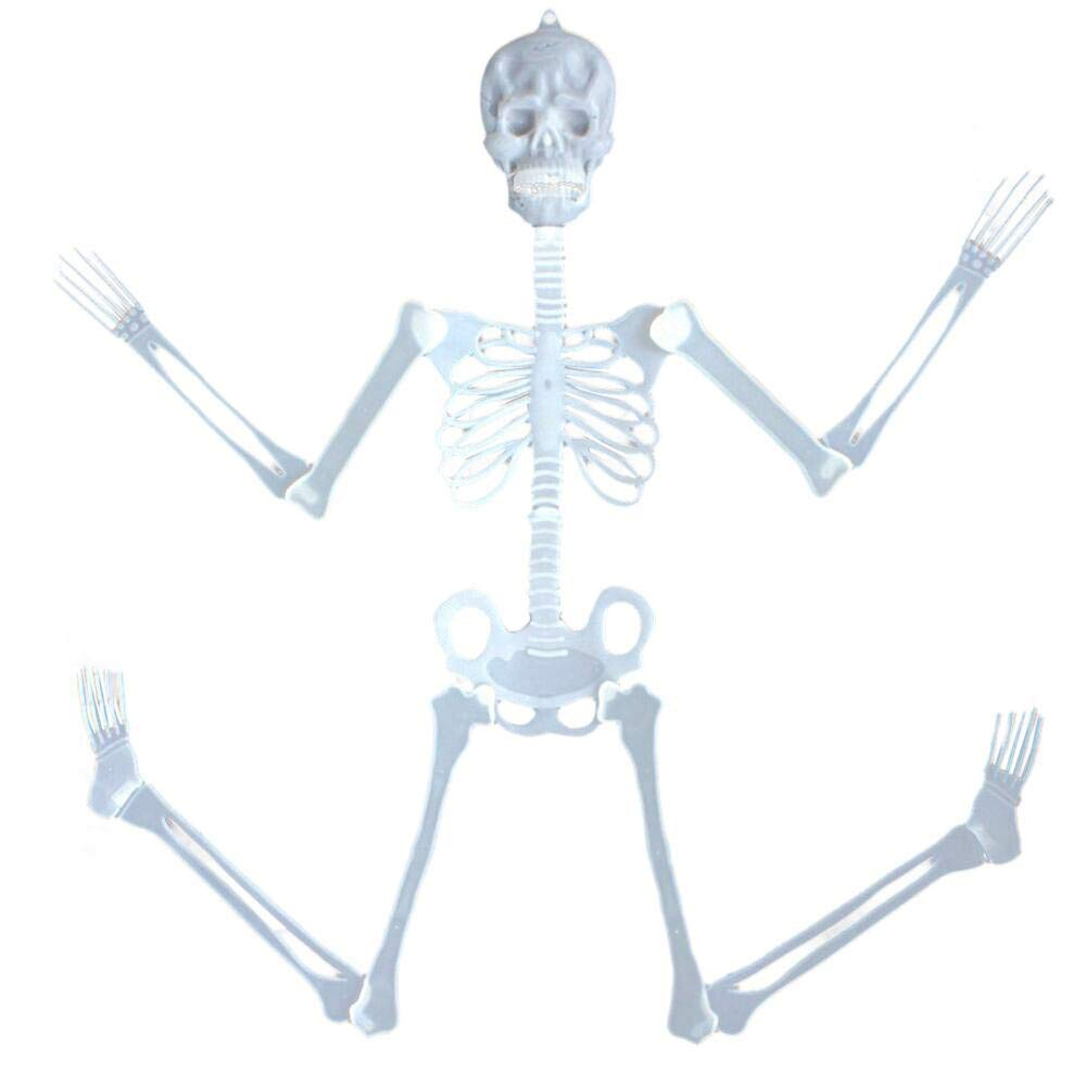 Leewa 35cm Luminous Skull Skeleton Body Scary Halloween Toy Haunted House Tricky Prop Halloween Toy for Halloween,Party Toy, House Decor, for Home, School, Office, Party Decorations (Green)