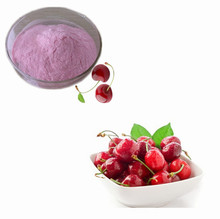 100% Pure Natural Freeze Dried Acerola Cherry Extract Powder