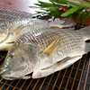 Clean tilapia fish gutted and scaled