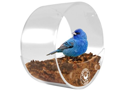 Round Window Bird Feeder: Watch Wild Birds Up Close, Super Strong Suction CupsBird Feeder