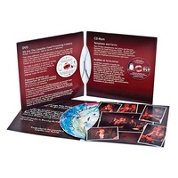 guangzhou city paper CD sleeves