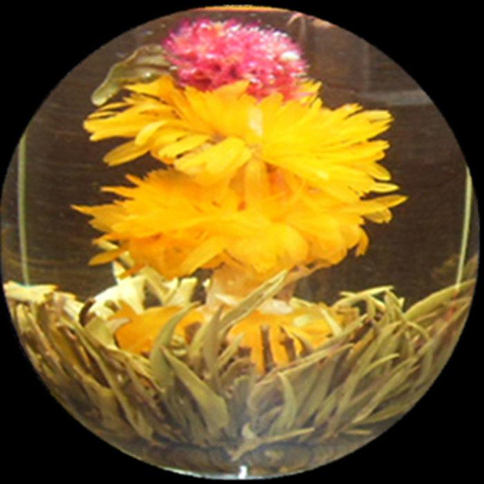 Chinese Jasmine Fairy Blooming Flower tea - 4uTea | 4uTea.com