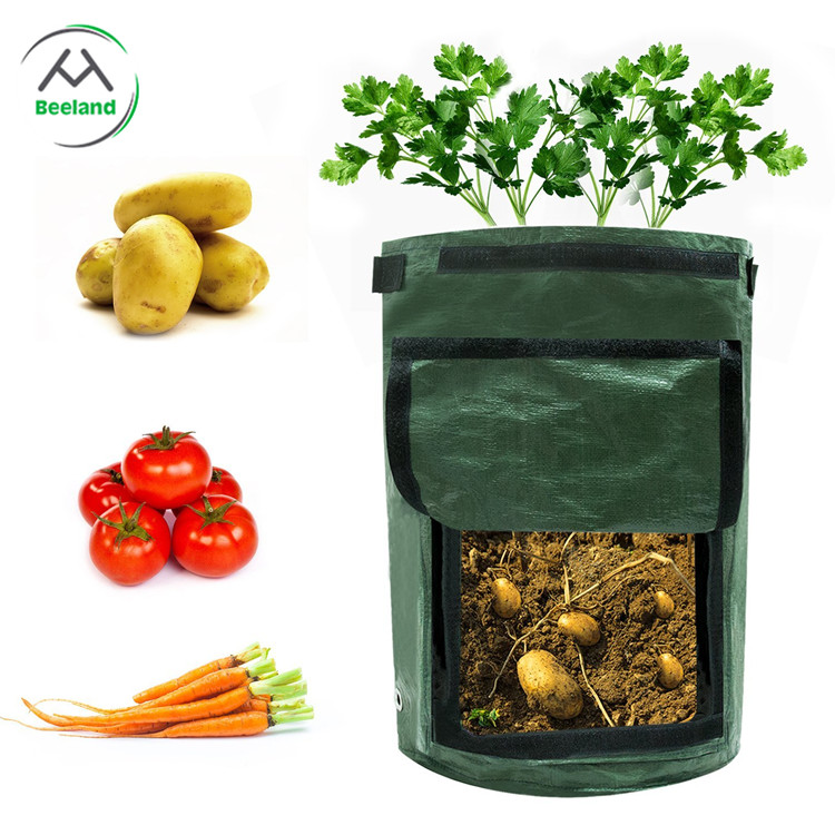Manufacturers promote low-cost gardening bags of various vegetables