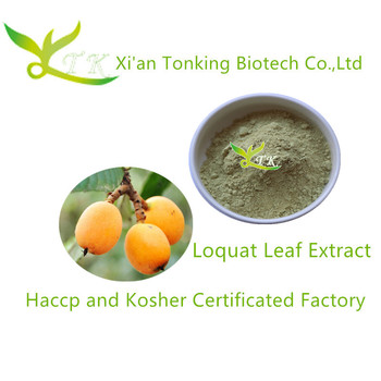 lowest Wholesale price Ursolic acid powder