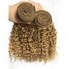 /product-detail/alibaba-best-selling-blonde-curly-hair-bundles-buying-brazilian-hair-in-china-60714123851.html