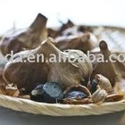 Black Garlic Oil Soft Capsule hot new product for 2012