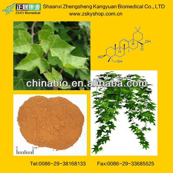 ivy leaf extrac powder with Hederagenin 3%, 5%,8%, 10%