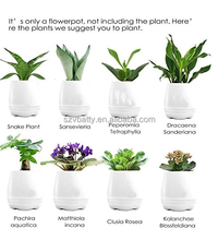 Smart Music Flower pot grow plants with Rechargeable Bluetooth Speaker and Night Light functions to make your life happy