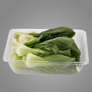 Disposable Plastic Take Away Food Sushi Packaging Tray