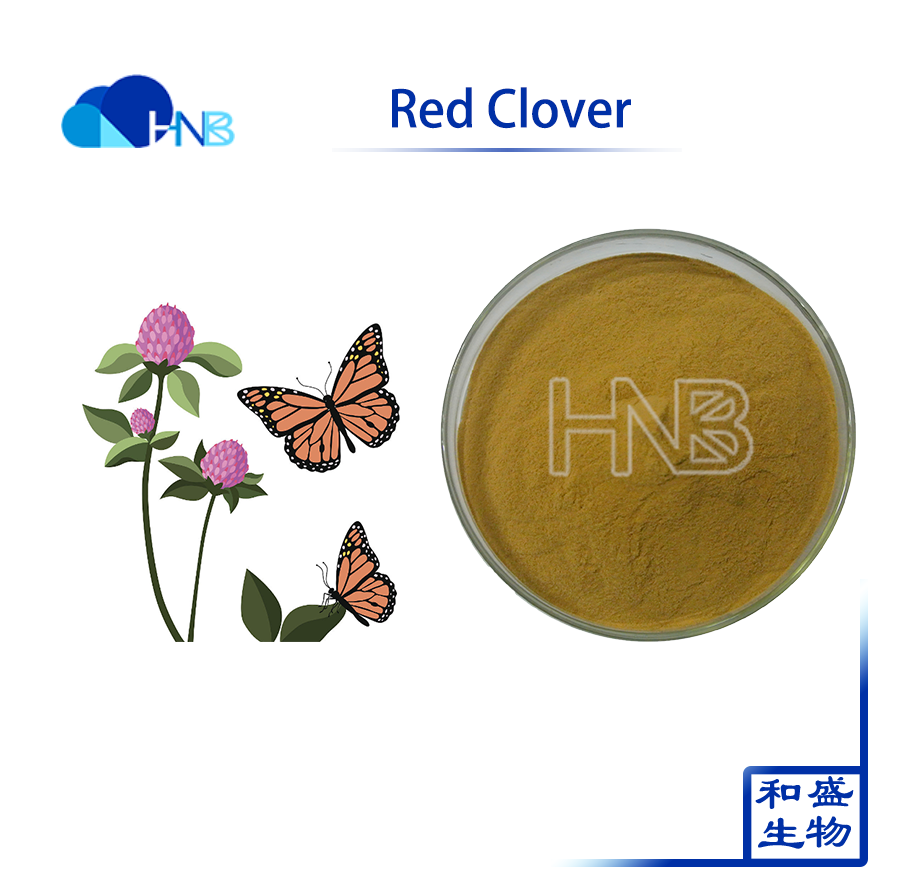 2017 best sell Red Clover Extract with high quality