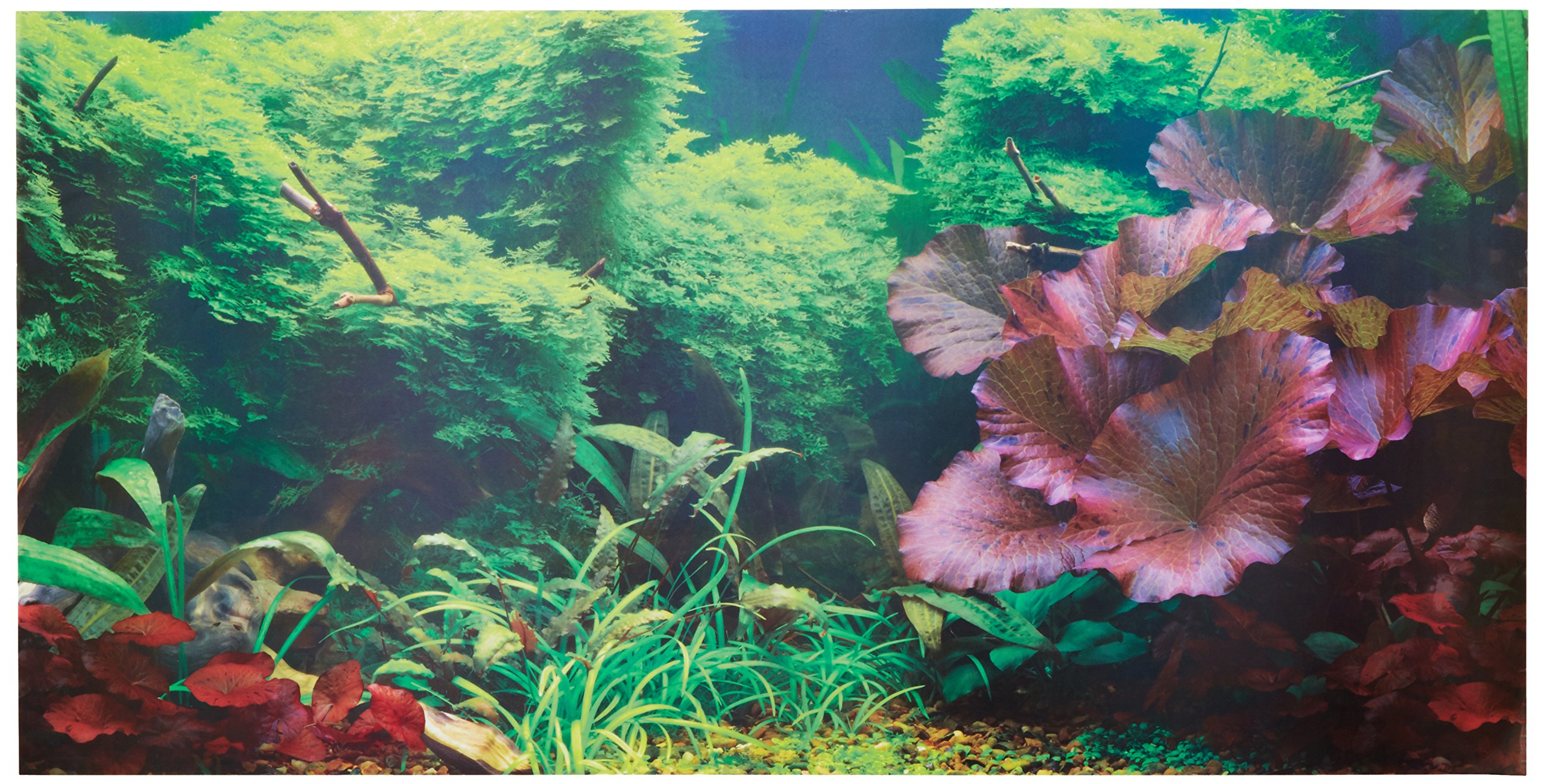 Buy Aquarium Background Easy To Apply And Remove Fish Tank