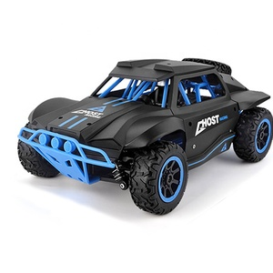 Unique Nitro 50 Km/H Drift Mini Rc Car for Sale