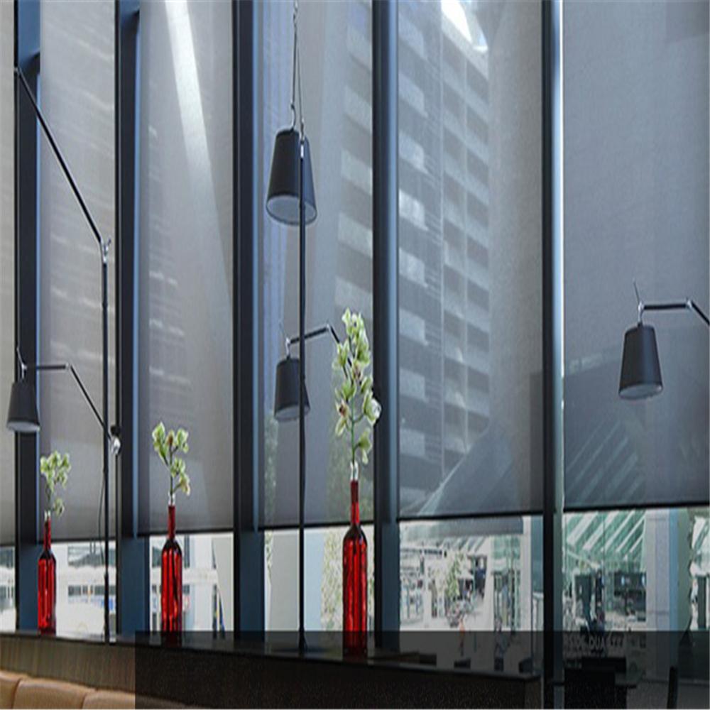 Transparante een manier jaloezieën voor thuis magneet venster screen roller blind