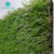 SZJ 2018 Hot Sale Popular 30 mm China Artificial Turf prices