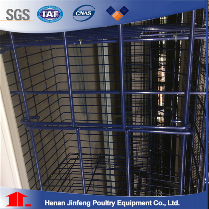 A Type Poultry Farm Equipment for Sale Battery Layer Cage