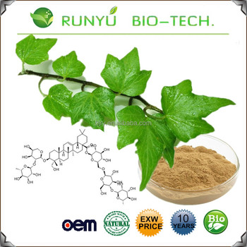 Fast Delivery Free Samples For Hedera Helix Extract Bindwood Extract Ivy  Extract - Buy Hedera Helix Extract,Bindwood Extract,Ivy Extract Product on