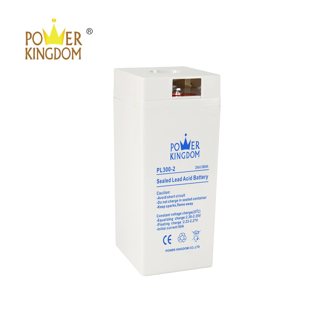 Power Kingdom gel battery suppliers manufacturers solar and wind power system-10