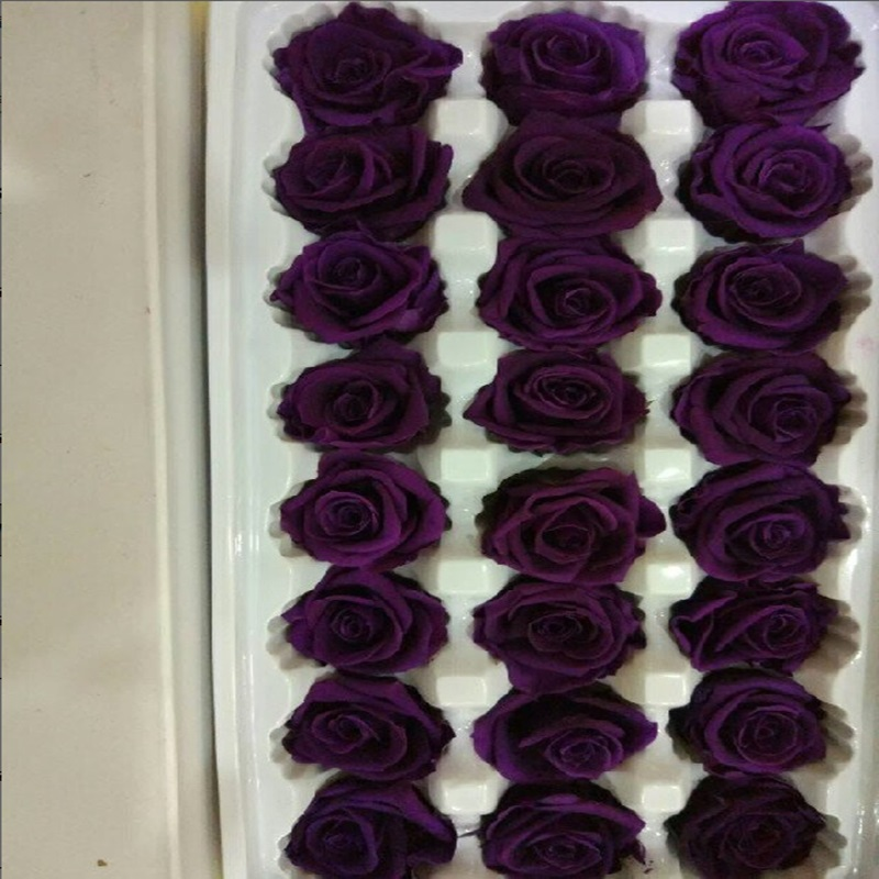 diy Preserved <strong>flowers</strong> 24pcs/lot <strong>flower</strong> wholesale immortal rose material 2-3cm